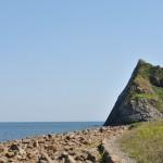 見渡すかぎりの青い海。芥屋の大門(けやのおおと)は糸島エリアのドライブに最適。