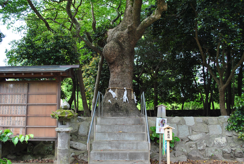 願いを叶えに行こう!! 子宝・安産祈願のお参りは、唐津市のパワースポット鏡神社へ。